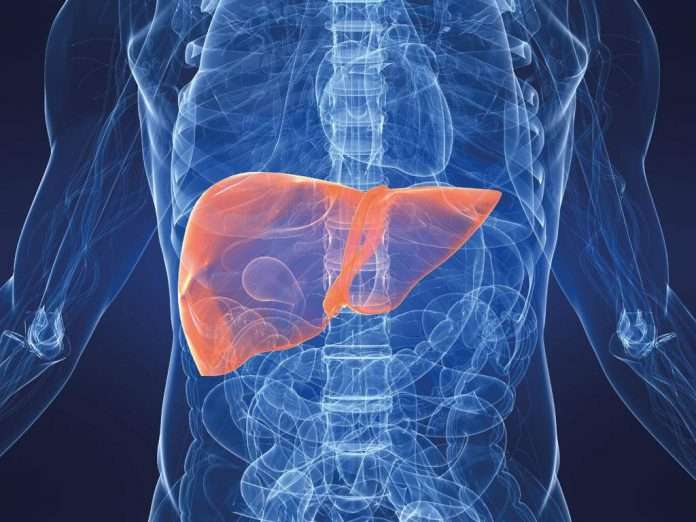 Diet in case of pancreas and liver disease