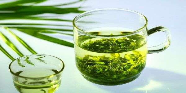 The ability of green tea to raise or lower the pressure: all the answers